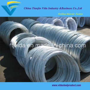 Hot dipped galvanized wire with Competitive Prices pictures & photos