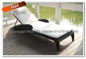 Outdoor Furniture & Sun Lounger (SL-016)