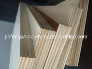 Furniture Board Melamine Plywood (1220X2440mm) pictures & photos