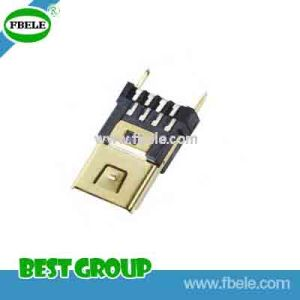 Mini USB/Plug/for Cable Ass′y USB Connector Fbmusb16-101 pictures & photos