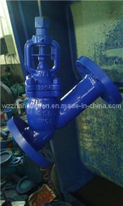 Stainless Steel Y-Type Bellows Seal Globe Valve pictures & photos