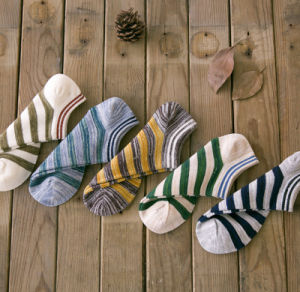 Spring Autumn Boat Striped Cotton Fashion Wholesale Men′s Socks