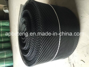 Black Oyster Plastic Bag Netting pictures & photos