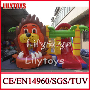 2015 Popular Inflatable Jumper Indoor Inflatable Bouncers for Sale (J-BC-031) pictures & photos
