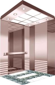 Large Loading Capacity Hydraulic Elevator/Lift (RLS-239) pictures & photos
