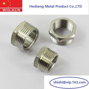 Precision Casting Bsp Thread Bushing Sanitary Pipe Fitting pictures & photos