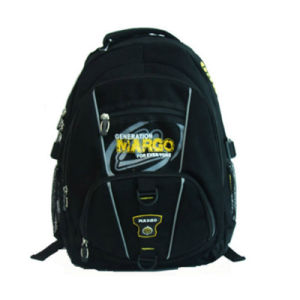 School Backpack /Leisure Sports Backpack pictures & photos