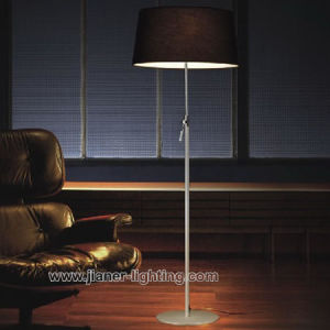 Hotel Bedside Floor Lamp / Modern Standing Lighting Lamp (F-2111-1B) pictures & photos