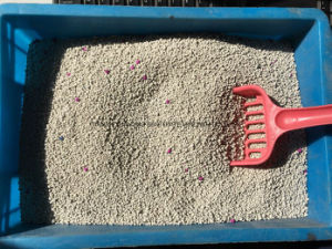 Ball Cat Litter-Professional Manufacturer of Bentonite-Factory pictures & photos