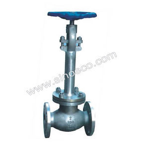 CF8m Cryogenic Steam Globe Valve pictures & photos