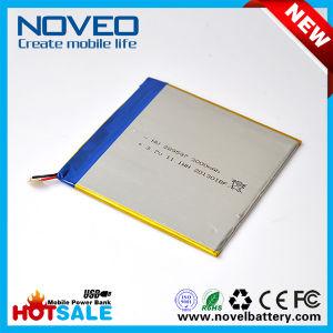 OEM Factory Sale 289597 3000mAh Li Polymer Battery