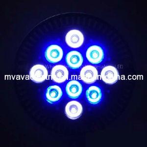 High P38 LED Aquarium Reef Corals Grow Light (MA-P38-12WB)