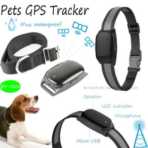 Activity Pet GPS Tracker with Waterproof IP66 Function (EV-200) pictures & photos