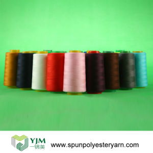 221g Polyester Sewing Thread for Garments pictures & photos