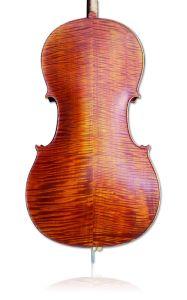 Advanced Cello (AC500) pictures & photos