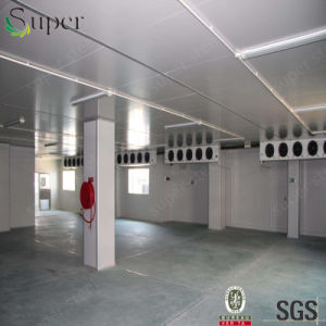 Cold Storage Cold Room for Vegetables Seafood Fruits pictures & photos