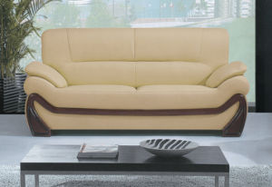 Italian Design Genuine Leather Modern Office Sofa (A006) pictures & photos