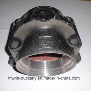 Sinotruck HOWO Spare Parts Balance Shaft Housing pictures & photos