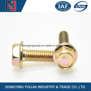 Hexagon Bolt with Flange pictures & photos