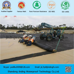 HDPE Geomembrane for Solid Waste Containment pictures & photos