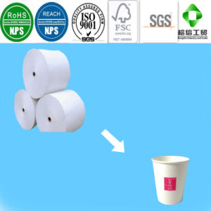 LDPE Laminated Paper for Making Paper Cup pictures & photos