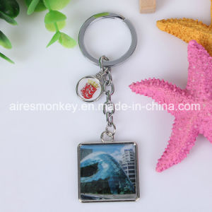 Zinc Alloy Metal Keychain of Souvenir pictures & photos