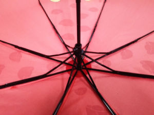 New Item Water Magic Changing Color Umbrella When Umbrella in Wet (FU-3821BX) pictures & photos