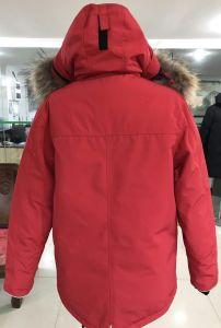 Duck Down Winter Coat 80 Down Jacket pictures & photos