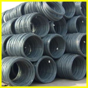 SAE1008 Q195 Steel Wire Rod pictures & photos