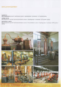 Food Grade Sanitary Stainless Steel Beer Conical Fermenter (ACE-FJG-J9) pictures & photos