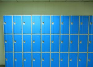 ABS Plastic Waterproof Storage Locker Le32-3 pictures & photos