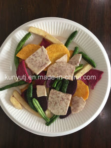 Low Temperature Vacuum Fried Fruit & Vegetable Chips pictures & photos