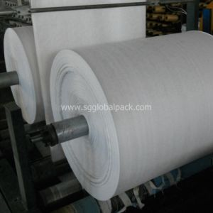 High Quality Customized Color PP Woven Fabric pictures & photos