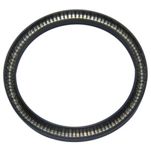 High Quality Spring Energized Seal pictures & photos