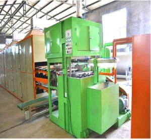 Top Quality Fruit Tray Making Machine pictures & photos