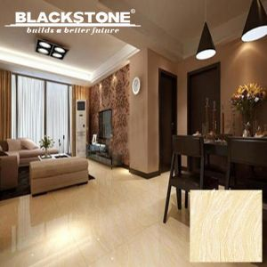 600X600 New Design Amazon Series Polished Porcelain Tile (JY6003) pictures & photos