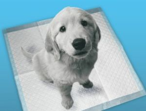 Puppy Training Pad Absorbent Pet Pad pictures & photos