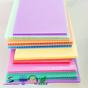Corflute Board/ Polypropylene PP Twin Wall Corrugated Plastic Sheet 5mm pictures & photos