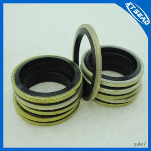 Bonded Gasket in Good Material for Auto Sealing pictures & photos