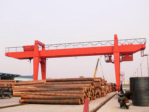 Double Girder Gantry Crane pictures & photos