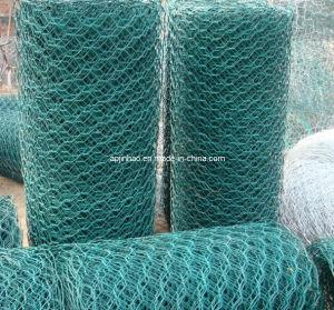 Galvanized Hexagonal Mesh (Netting) (JH-013)