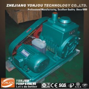 Spiral Slice Vacuum Pump, Oil Lubricated Vacuum Pump, Vane Vacuum Pump pictures & photos