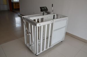 Galvanized Sheep Weighing Crate with Scale pictures & photos