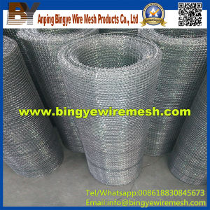 Stainless Steel Crimped Wire Mesh for Filter pictures & photos