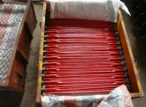 Professional Cultivator Fork/ Tines for Tiller pictures & photos