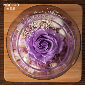 Ivenran Luminous Wish Bottle Fresh Flowers for Creative Holiday Decoration Gift pictures & photos