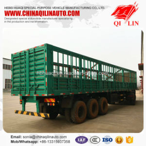 60 Tons Cargo Fence Semi Trailer with Collapsible Doors pictures & photos