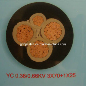 600V Rubber Insulated Cable pictures & photos