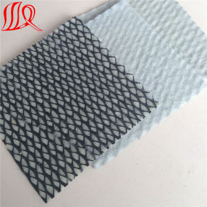 HDPE 6.0mm Geocomposite Drainage Net Used in Landfill pictures & photos