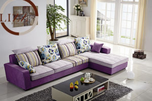 Modern Furiniture Sofa pictures & photos